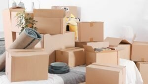 Packers and Movers Tardeo