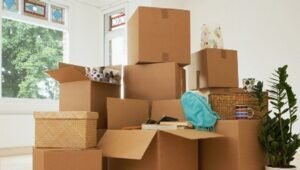 Packers and Movers Vashi